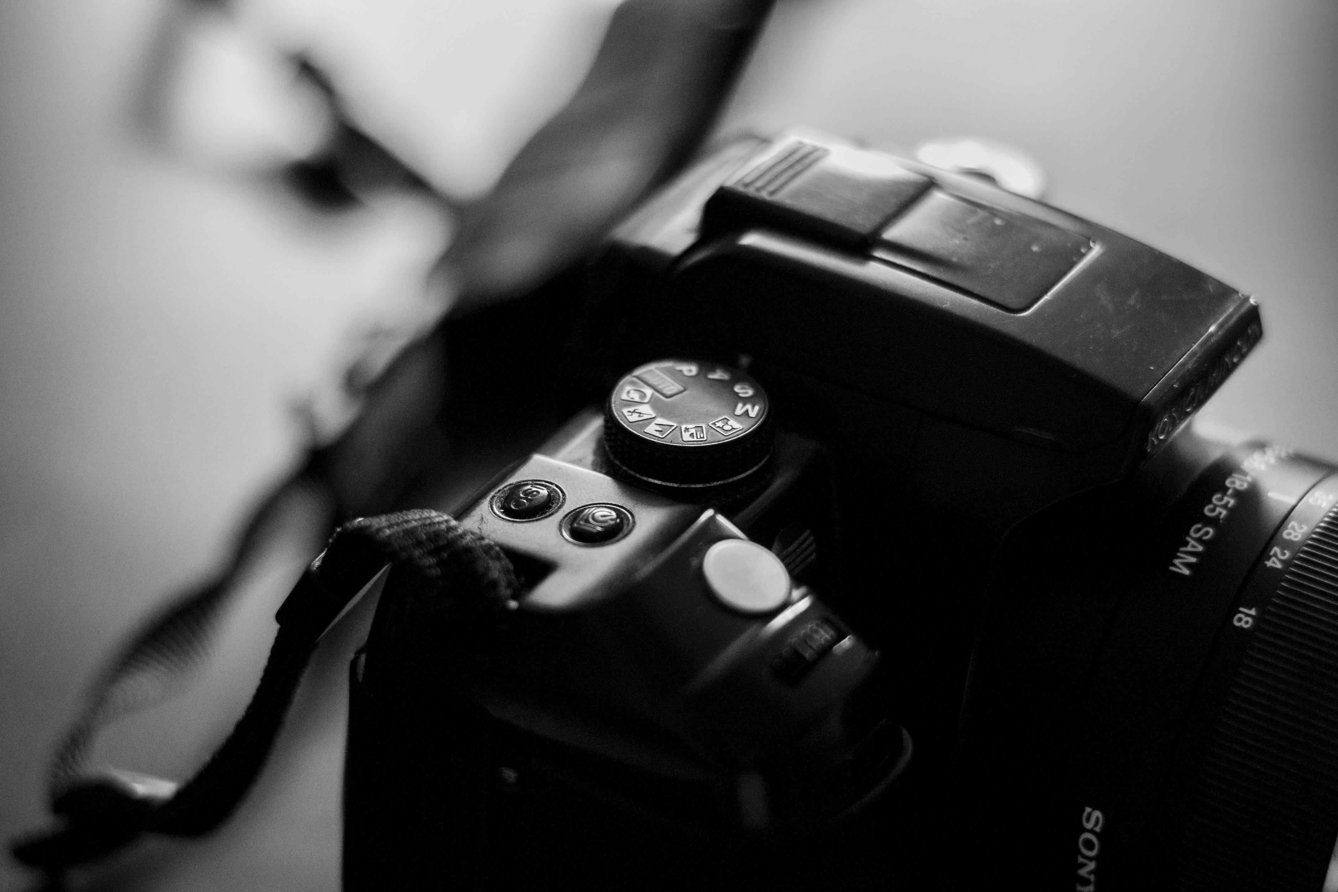 זכויות יוצרים בצילום